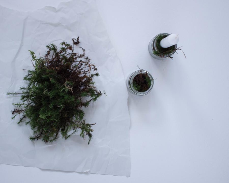Zu sehen ist Moos und kleine Gläser für den DIY upcycling last minute Adventskranz, die mit dem Moos befüllt werden